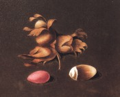 Figured is a cluster of elongated nuts with medium length husks and a red kernel. Pomona Britannica pl.73, 1812.